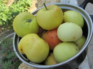 Benefícios e malefícios da semente de maçã, Benefícios da maçã, Benefícios da maçã durante a noite