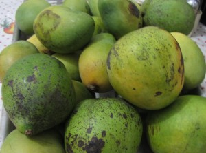 Mango-useful-properties-and-contraindications-300x222