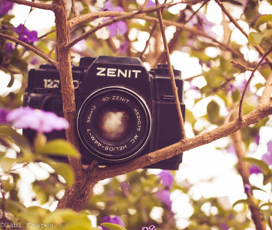 zenit_10077803543_o