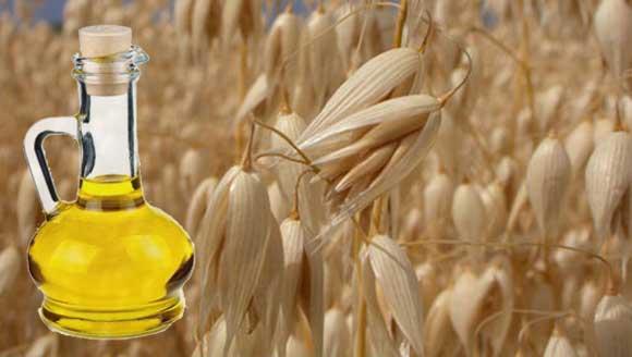Óleo de aveia para tratamento de doenças, Como consumir o óleo de aveia, Uso do óleo de aveia em cosméticos
